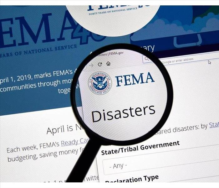 Fema.gov Disasters USA Government home page under magnifying glass