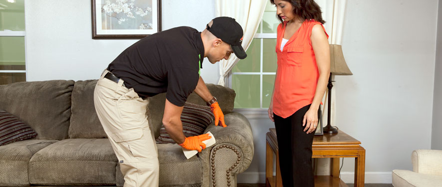 Northeast Dallas, TX carpet upholstery cleaning
