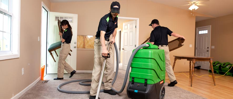 Northeast Dallas, TX cleaning services